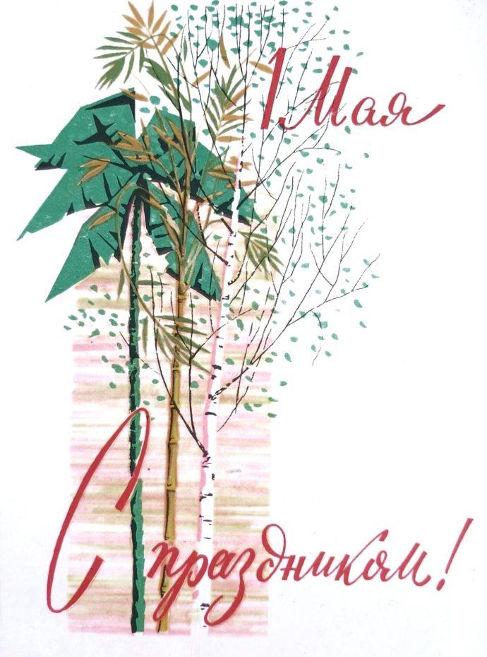 1962 г., художник С. Жмуренков. Пальма, бамбук и березка. И все цветёт. И пахнет))